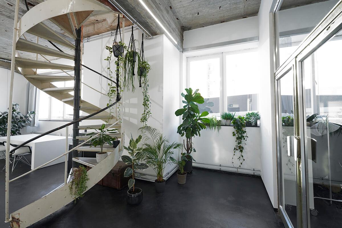 Lounge - raw studios.